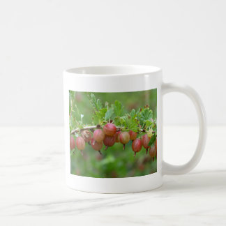 Fruits of a gooseberry coffee mug