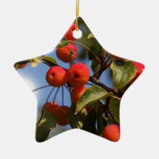 Fruits of a wild apple tree ceramic ornament