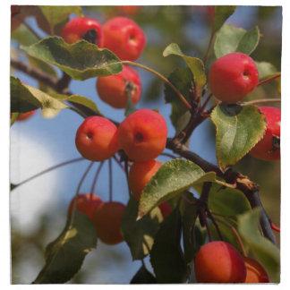 Fruits of a wild apple tree cloth napkin