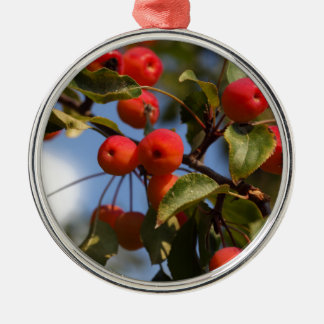 Fruits of a wild apple tree metal ornament