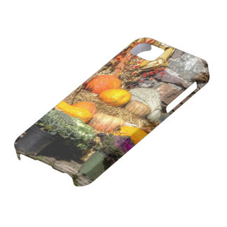 Fruits Of The Autumn Harvest iPhone SE/5/5s Case