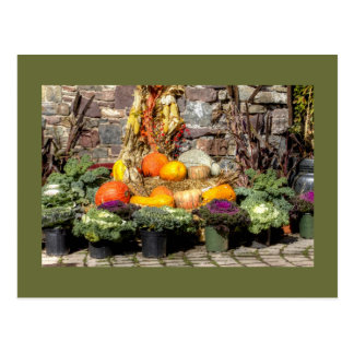 Fruits Of The Autumn Harvest Postcard