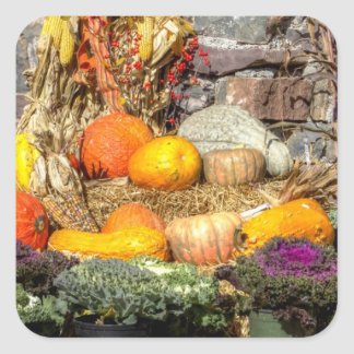 Fruits Of The Autumn Harvest Square Stickers