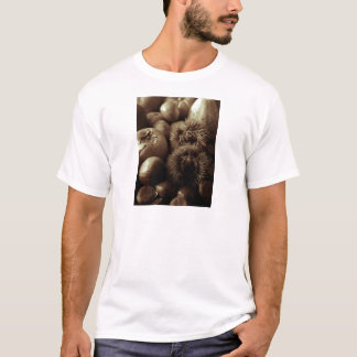 Fruits T-Shirt