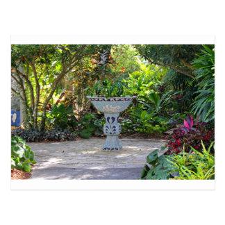 Frunce en el jardín postales
