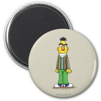 Frustrated Bert Magnet