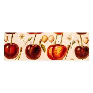 Fruta antigua de las cerezas de las variedades de  plantilla de tarjeta de negocio