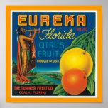 Fruta cítrica de Eureka la Florida Póster