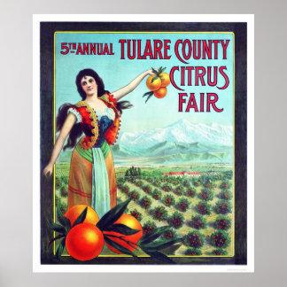 Fruta cítrica del condado de Tulare justa Póster