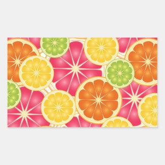 Fruta cítrica pegatina rectangular