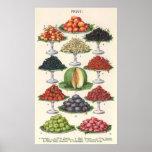 Fruta clasificada comidas del vintage en las bande impresiones