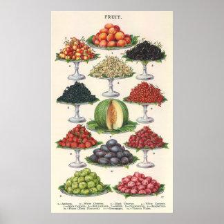 Fruta clasificada comidas del vintage en las póster