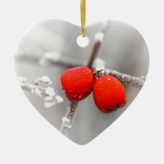 Fruta congelada ornatos