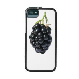 Fruta de Blackberry