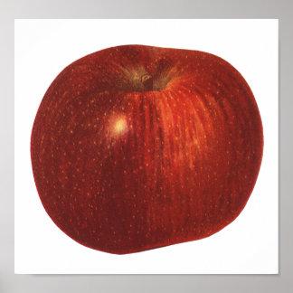 Fruta de la comida del vintage, Apple red deliciou Poster