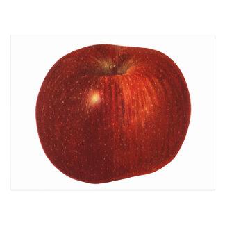 Fruta de la comida del vintage, Apple red Postal
