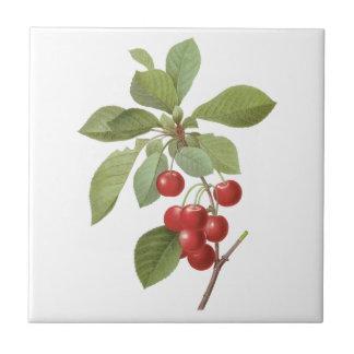 Fruta de la comida del vintage, cerezas de la cere teja cerámica