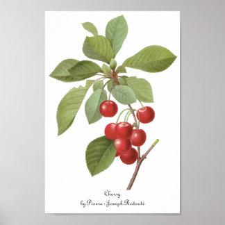 Fruta de la comida del vintage, cerezas de la póster