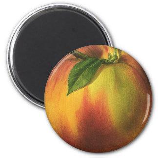 Fruta de la comida del vintage, melocotón maduro r iman de frigorífico