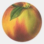Fruta de la comida del vintage, melocotón maduro r etiqueta