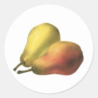 Fruta de la comida del vintage, peras maduras pegatina redonda