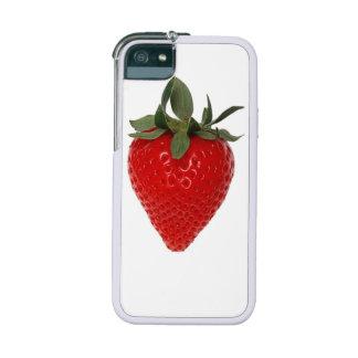 Fruta de la fresa