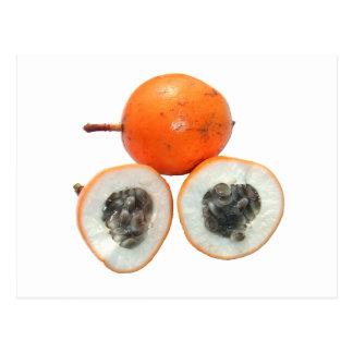 Fruta de la pasión tarjetas postales