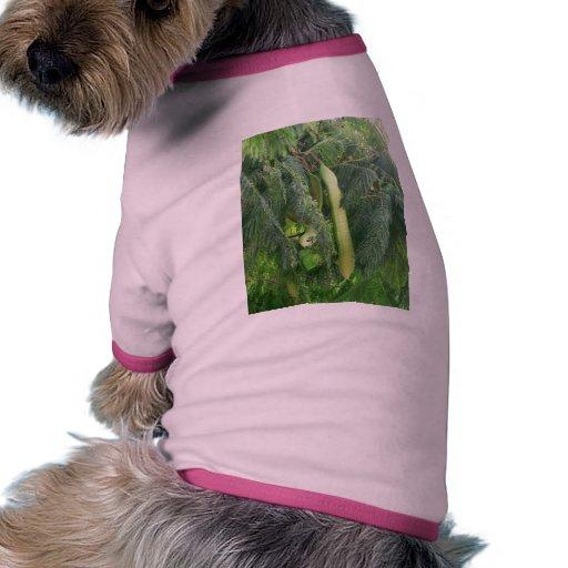 Fruta de la vaina camiseta con mangas para perro