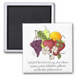Fruta del alcohol imanes para frigoríficos