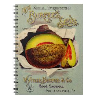 Fruta del cantalupo del Victorian de la publicidad Libro De Apuntes