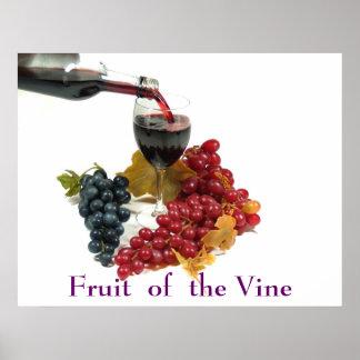 Fruta del poster de la vid