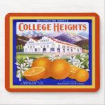 Fruta del vintage del ~ de los naranjas de la marc tapetes de ratones