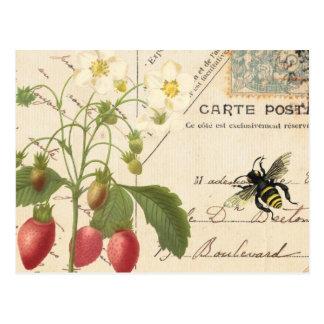 Fruta del vintage y postal floral de la postal…