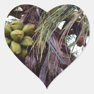 Fruta en árbol en Belice Pegatina En Forma De Corazón