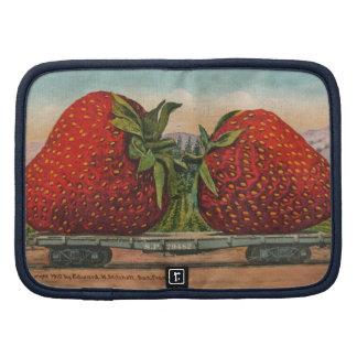 Fruta fresca de las fresas rojas del vintage planificador