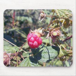 Fruta jugosa Mousepad Tapete De Raton