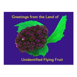 Fruta no identificada del vuelo de la postal diver