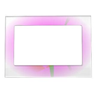 Fruta rosada marcos magnéticos para fotos