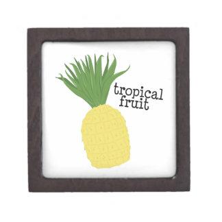 Fruta tropical cajas de regalo de calidad