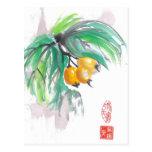 Fruta tropical del Loquat Tarjetas Postales