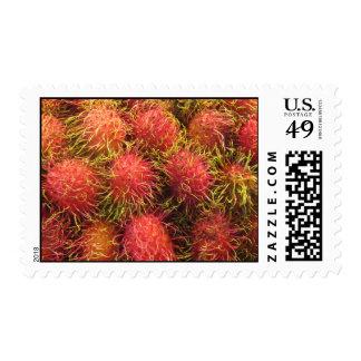 Fruta tropical del Rambutan Sello Postal