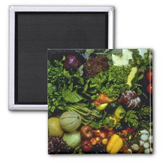Fruta y verduras imán cuadrado