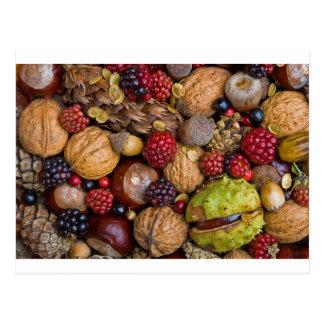 Frutas del otoño postal