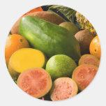 Frutas tropicales etiquetas redondas