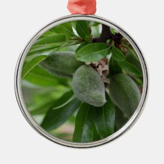 Frutas verdes de un árbol de almendra adorno navideño redondo de metal