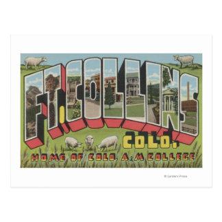 Ft. Collins, Colorado - Large Letter Scenes Postcard