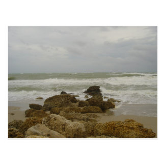 Ft Lauderdale - Hurricane Clean Up Postcards