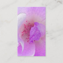 *~*  Fuchia Pink Lavender Violet Rose Floral Spa Business Card