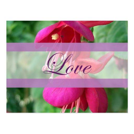 Fuchsia 4 Love Wedding Postcard