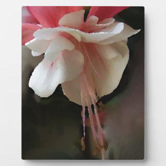 Fuchsia Bloom Plaque